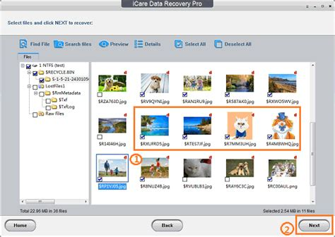 format video recovery software free download free format recovery recover formatted hard drive sd