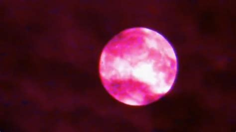 what is a pink moon pink moon dream prophecy alert youtube