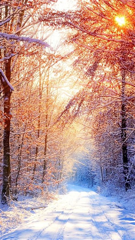 Free Winter Wallpaper For Iphone 5 | top winter iphone 5 hd wallpapers