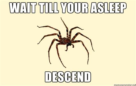 Spider Meme - huge spider memes image memes at relatably com