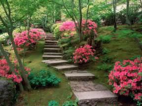 Flower Garden Japan Azaleas Japanese Garden Wallpapers Hd Wallpapers