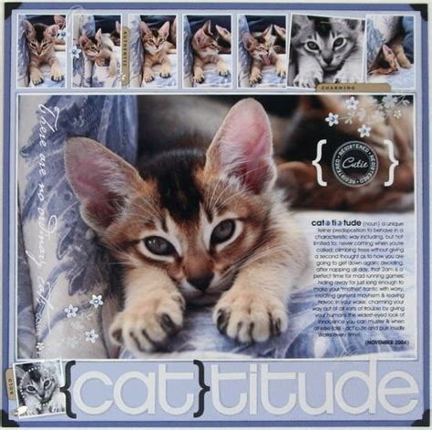 scrapbook layout ideas cats 1000 images about layouts pets on pinterest dog