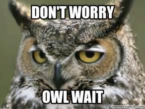 Owl Meme - owl wait