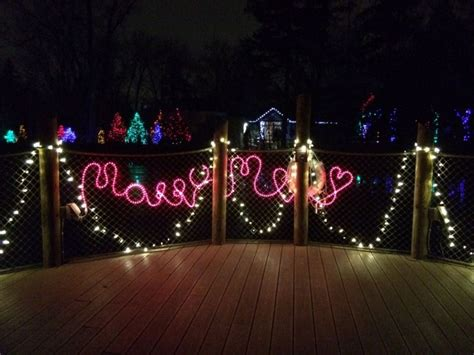 Tis The Season For Proposals At The Detroit Zoo S Wild Lights Detroit Zoo