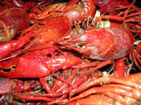 crawfish house houma the top 10 local restaurants in houma bayou country