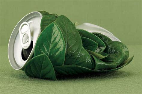 imagenes ecologicas impactantes 191 qu 233 es el marketing verde