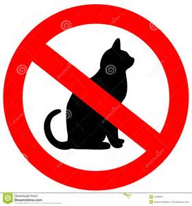 No cats stock image image 12899221