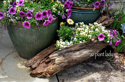 Tree Log Flower Planter by Teak Bowls Make Unique And Beautiful Planters Ramblings