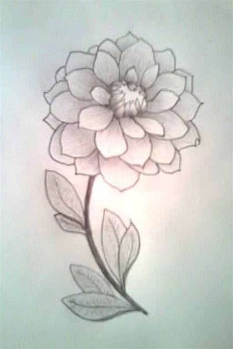 Drawing Flowers by 25 Best Ideas About Simple Flower Drawing On