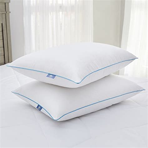 serta perfect day 2 pack bed pillow with 2 quot gusset page serta perfect sleeper fresh cool pillow 2 pack mattress