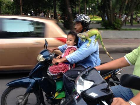 Auto Mieten In Vietnam by Tipps Zur Fortbewegung In Vietnam Green Tiger Travel