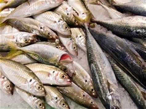 reazioni chimiche in cucina cucina molecolare casalinga pesce e cafodos di enrico