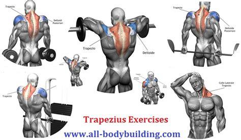 shoulder workouts archives workout chart
