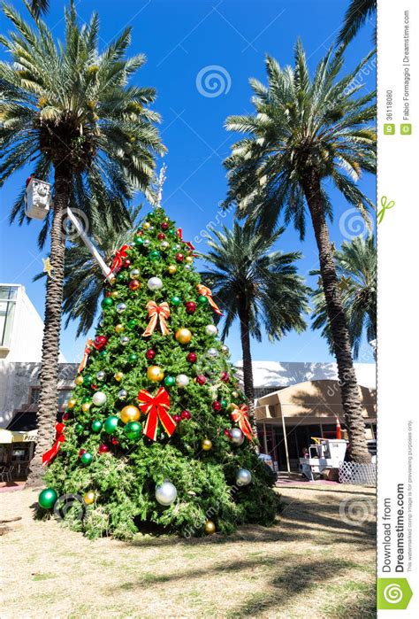 christmas tree in miami stock photo image 36118080