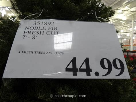 noble fir fresh cut 2014 christmas tree