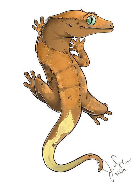 crested gecko by csillasartbeats on deviantart