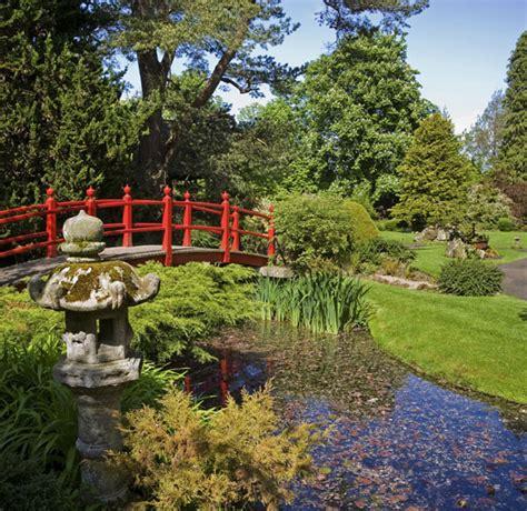 giardini giapponesi kildare town il curragh allevamento equino giardini