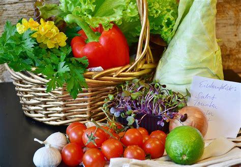 alimenti gruppo sanguigno a dieta gruppo sanguigno ecco come funziona la dieta