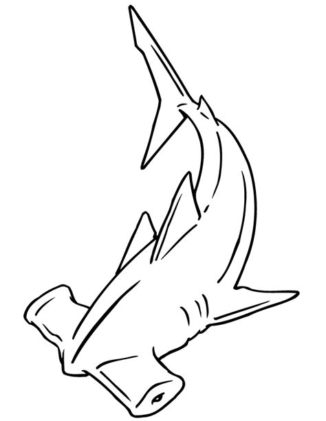 coloring page of a hammerhead shark hammerhead shark coloring page h m coloring pages