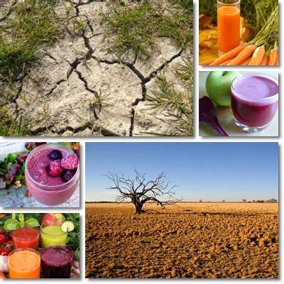 Detox Pros And Cons by Detox Diet Nutrient Deficiencies Natureword