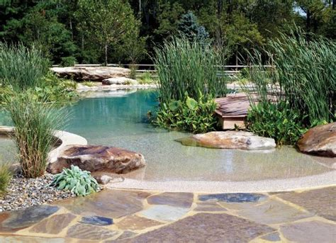 How Does A Natural Swimming Pool Work Luxury Pools Backyard Pond Pool