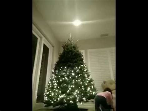 how to put up christmas tree lights youtube