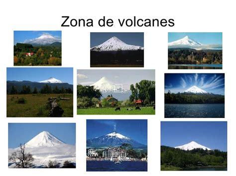 el huemul uno de los representantes del escudo nacional fotos animales zona sur de chile chile zona sur