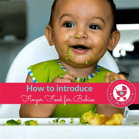 Introducing Baby Kiwi by 8 Month Baby Food Chart My Moppet