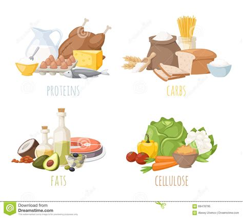 healthy fats and proteins healthy nutrition proteins fats carbohydrates balanced