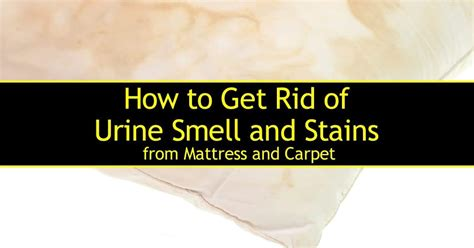 how to get rid of bad odor inside the washing machine how to clean a mattress with urine stains how to remove