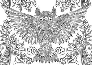 Abstract Owl Coloring Pages owl coloring pages eliolera
