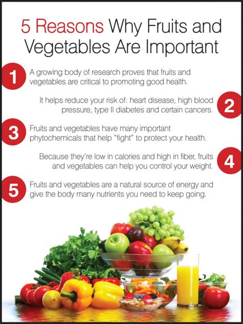 the importance of fruit and vegetables in the diet 5 reasons fruits vegetables important workhealthy safety