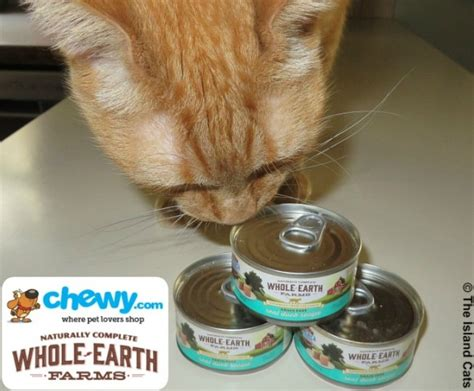 whole earth food reviews whole earth farms cat food review chewyinfluencer the island cats every cat
