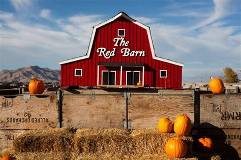 The Barn Hours Rowley S Barn The Place To Visit This Fall