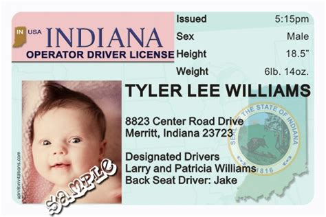 drivers license template drivers license template image search results