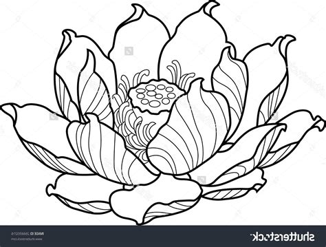 tattoo lotus outline hd stock vector black silhouette outline lotus tattoo