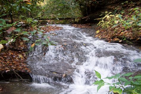 section 307 clean water act npdes bmp and spcc plans biological systems consultants