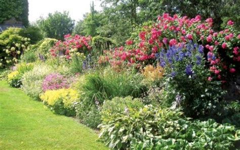 flower borders will transform your garden gardens