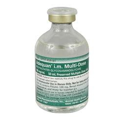 adequan dosage for dogs adequan l arthritis medication for horses medi vet