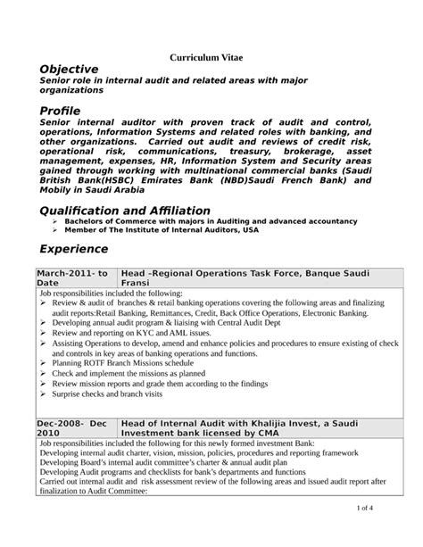 professional internal auditor resume template