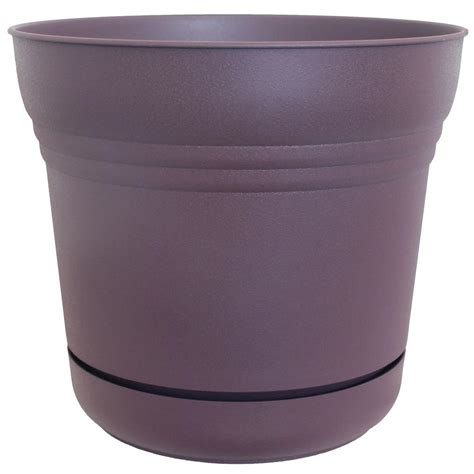 bloem 5 in plastic exotica saturn planter sp0556 the
