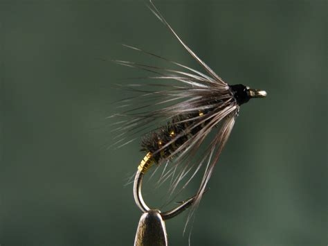flight pattern of house flies soft hackle wet flies 171 don bastian wet flies