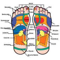 Detox foot pads reflexology chart whole family products