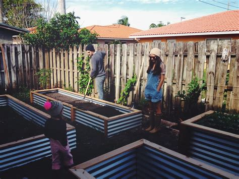 Corrugated Iron Vegetable Garden Ohdeardrea Our Raised Beds Easy Metal Wood Garden Bed
