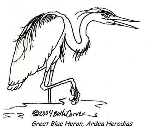 Coloring Pages Of Water Birds | waterbird coloring pages coloring pages