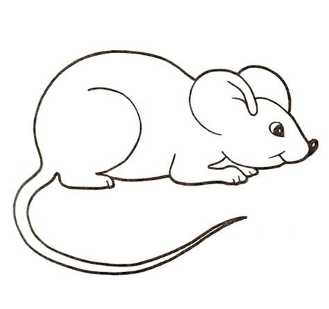 cute mouse coloring page download
