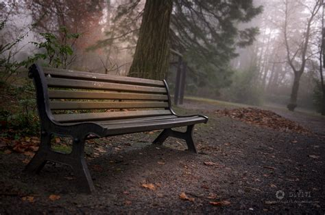 lonely bench lonely bench