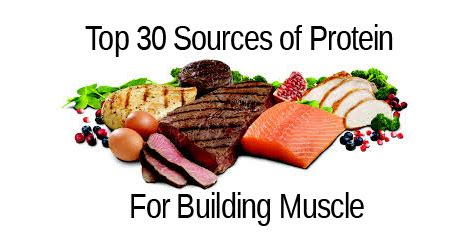 top 30 foods that build muscle musclehack