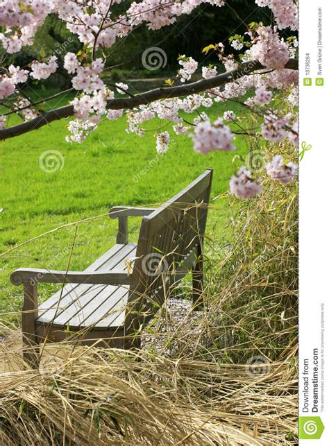 peace bench bench of peace stock images image 13736264