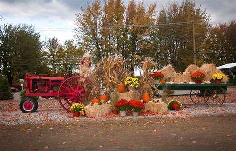 Take Your Pick: The Best Apple Orchards Around   William